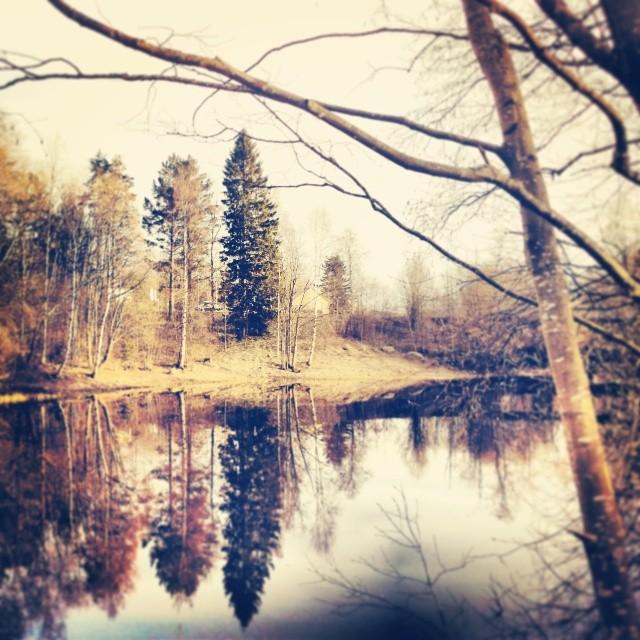 """""""På början av hösten"""" Photo: Anna Isabella Sandberg 2014"""