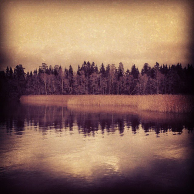 """Den mörka skogen"" Photo: Anna Isabella Sandberg 2013"